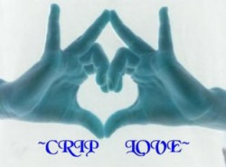 Crip Info Support The Crips